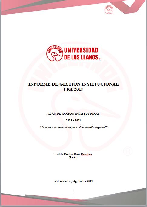 Informe de Gestión 2019 I PA